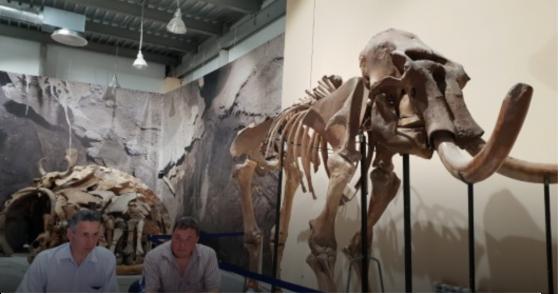 Самая северная стоянка древних людей обнаружена в Якутии